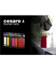 Mr&Mrs Cesare Scented card JCESTES001 Scent for Car, Fresh Air, EVA, White