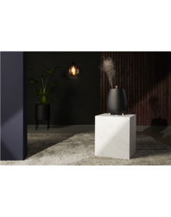Duux Ultrasonic Humidifier Tag Ultrasonic, 12 W, Water tank capacity 2.5 L, Suitable for rooms up to 30 m², Ultrasonic, Humidifi