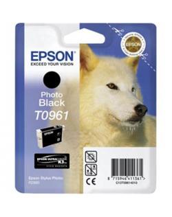 Epson T096 Photo Black Cartridge Epson